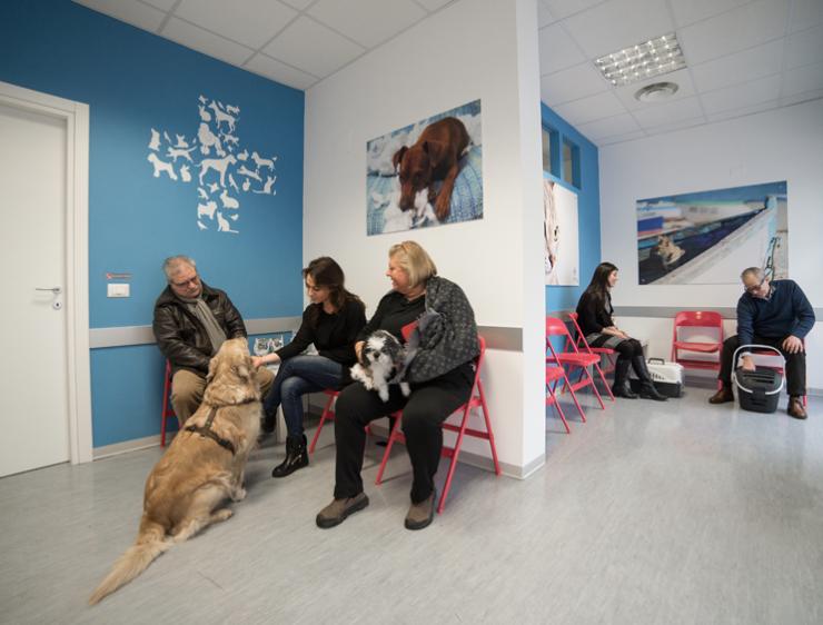 Sala dattesa  Clinica Veterinaria San Maurizio